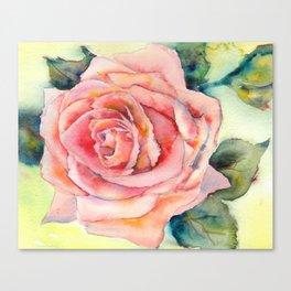 Full Pink Rose Canvas Print