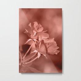 Through Rose Colored Glasses Metal Print