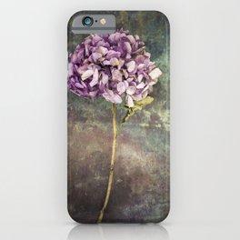 Beautiful Hydrangea iPhone Case