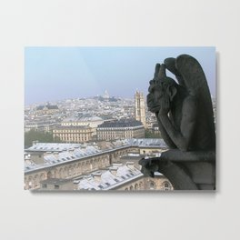 A View from the Top Metal Print