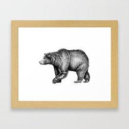 Bear ink Framed Art Print