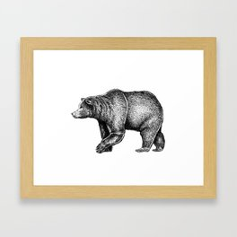 Bear ink Framed Art Print
