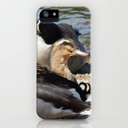 She keeps watch iPhone Case