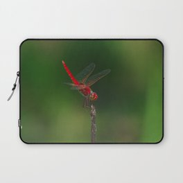Red Baron (Urothemis aliena) Laptop Sleeve