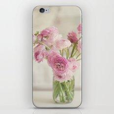 A Pastel Winter iPhone & iPod Skin