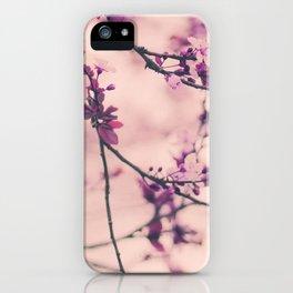 Lace Dress iPhone Case
