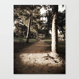 Hidden Path Canvas Print