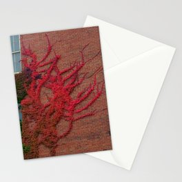 Leaves on the Asylum Stationery Cards
