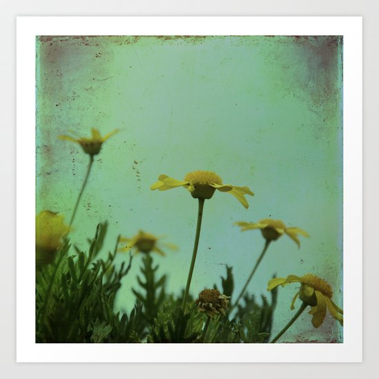 Fragile Flowers Art Print