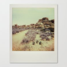 Arches National Park - Polaroid Canvas Print