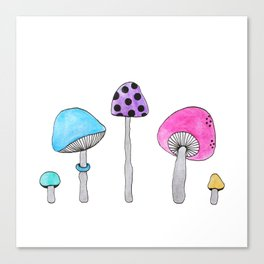 Colorful Shrooms Canvas Print