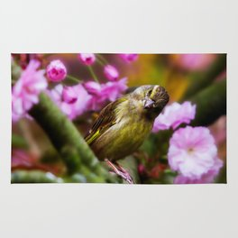 Green Finch Rug