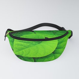 Dutchman's Pipe Fanny Pack