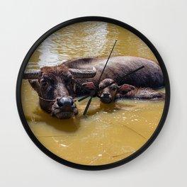 Water Buffalo and Calf Wall Clock