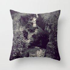 Began in darkness Throw Pillow