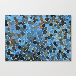 My Coin Collection  Canvas Print