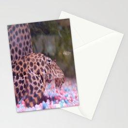 Photo Pleco Leopard Stationery Cards