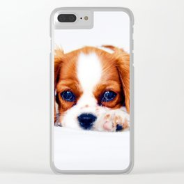 Cavalier King Charles Clear iPhone Case