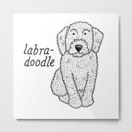 Dog Breeds: Labradoodle Metal Print