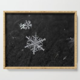 fragile snowflake Serving Tray
