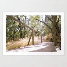 Small Bridge In The Woods Art Print