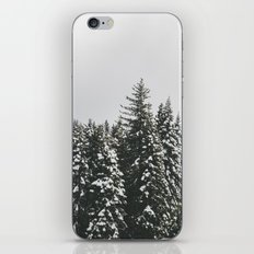 Snow Trees iPhone & iPod Skin