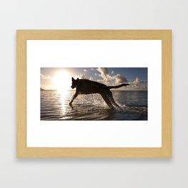 Jumping with joy. Framed Art Print