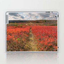 Autumn Huckleberry Trail Laptop & iPad Skin