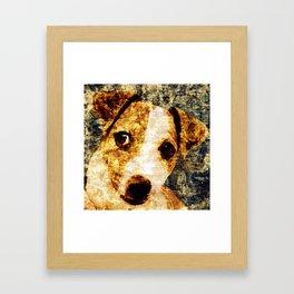 「sit」Jack Russell Terrier Framed Art Print
