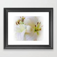 White Lilies Framed Art Print