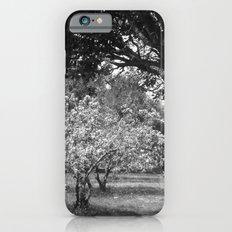 Under Cover Slim Case iPhone 6s