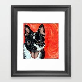 Boston Terrier Dog Art Framed Art Print
