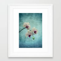 orchid Framed Art Prints featuring Orchid by KunstFabrik_StaticMovement Manu Jobst