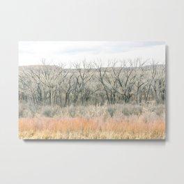 natural lines Metal Print