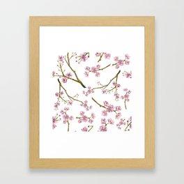 Sakura Cherry Blossoms Framed Art Print
