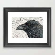 Crow Raven Framed Art Print