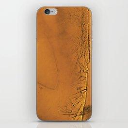 Familiar Desert 05 iPhone Skin