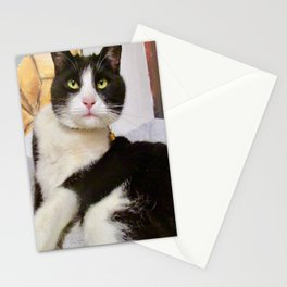Orazio latin lover cat Stationery Cards