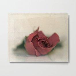 Single Rose fine art photography Metal Print