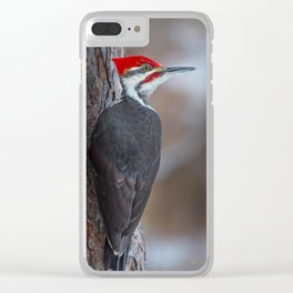 December Pileated Clear iPhone Case