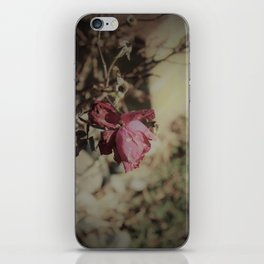 December Rose iPhone Skin