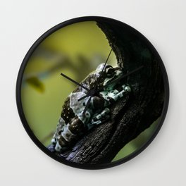 Frog Far From Home Wall Clock