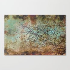 For the love of trees - textured photography Canvas Print