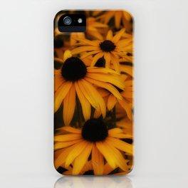 Black-Eyed Susan, yellow autumn daisy iPhone Case