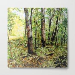 Forest Woods Vermont Landscape Metal Print