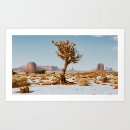 Monument Valley Juniper Art Print