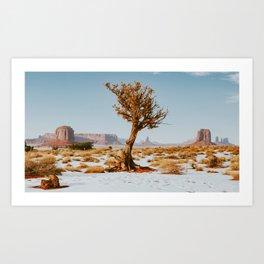Monument Valley Juniper Art Print