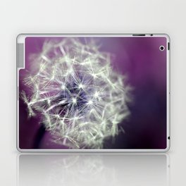 purple dandelion Laptop & iPad Skin