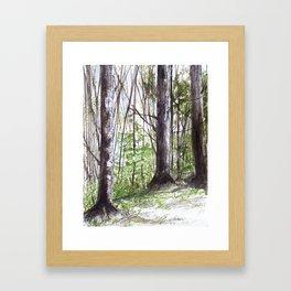 Woodland Trees in Vermont Illustration Nature Art Framed Art Print