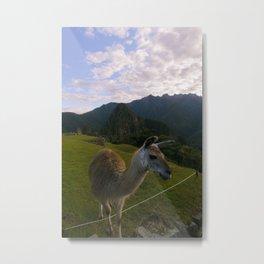 Machu Picchu 001 Metal Print